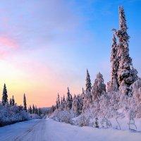Зимняя дорога :: Александр Кокоулин
