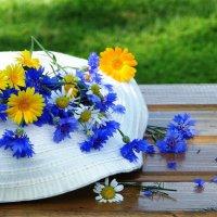 Лето в шляпе :: Наталья Казанцева