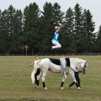 конная гимнастика :: Дмитрий .