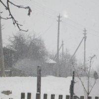 Зима-весной :: Мария Веслова