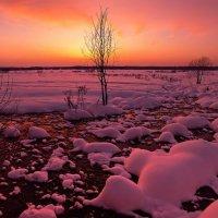 Розовый закат :: Леся Вишня