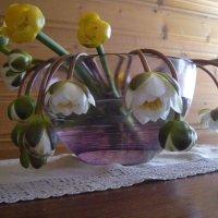 неожиданный подарок :: liudmila drake