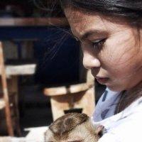 泰国2014 :: ANNA VINOKUROVA