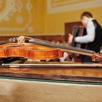 Скрипка :: Анатолий Тимофеев