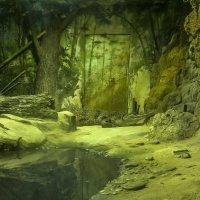 Deep in Jungle :: Сергей Гойшик