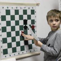 Шахматист :: Sergey Isakov