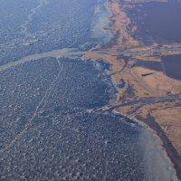 Куршский залив :: Дмитрий .