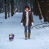 Дама с собачкой :: Павел Белоус