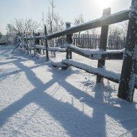 Зима :: Ivan Zarechneff