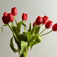 С праздником вас милые женщины ... :: Юрий Никитин