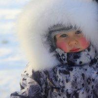 На морозе. :: Татьяна Латышева