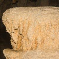 В пещере: Слон :: Alexander Antonov