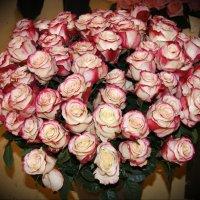 Букет роз :: Наталия Короткова
