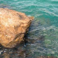 Море ждет! :: Nelli Lesnovsky