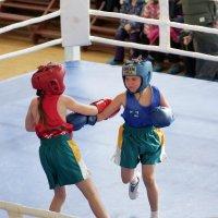 Девчата-боксеры :: Алексей Golovchenko