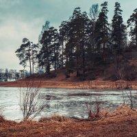 Средне Суздальское озеро :: Захар Кузин