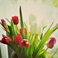 Весеннее настроение. :: Anna Volkova