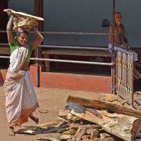 Индия. Женщина заготавливает дрова для домашнего очага :: Владимир Шибинский