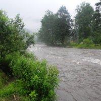 Река Сема утром. :: Олег Афанасьевич Сергеев
