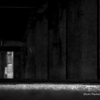 Свет в темноте :: Владимир Самышев