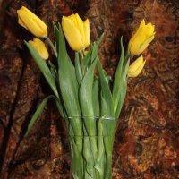 Букет тюльпанов в вазе :: Наталья Золотых-Сибирская
