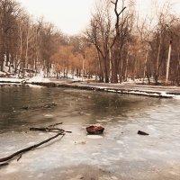 Замерзший парк :: Александр Мартовецкий