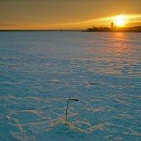 романтика зимней рыбалки :: Андрей ЕВСЕЕВ