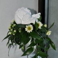 цветы :: Анна Дурнова