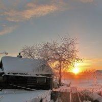 Зимнее утро. :: vkosin2012 Косинова Валентина
