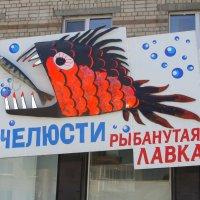 ВОТ ТАКАЯ ВЫВЕСКА НА МАГАЗИНЧИКЕ.... :: Наталья Меркулова