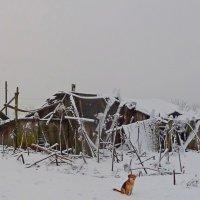 ВЕРНЫЙ СТРАЖ :: Виктор Осипчук