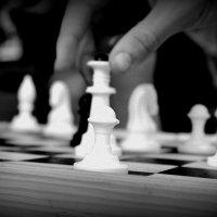 Шахмати :: Наташа Савостяник