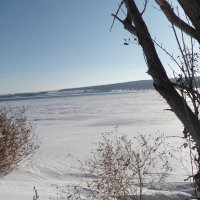 На берегу реки. :: НАДЕЖДА КЛАДЧИХИНА