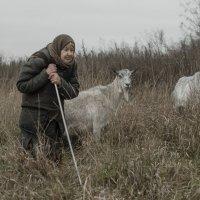 Путешествие с домашними животными :: Ирина Зайцева