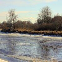 Река Тосна :: Денис Матвеев