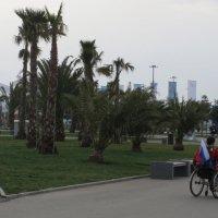Олимпийский парк :: Вера Блажнова