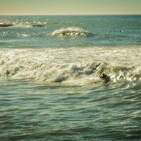 Осенний серфингист :: Yana Fizazi
