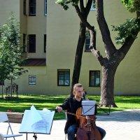 Прекрасный  музыкант играет музыку весны :: Владимир Гилясев