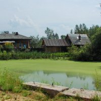 Пруд в деревне Погорелка :: Марина Морозова