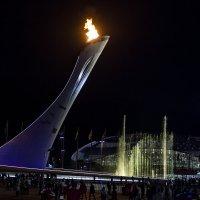 Олимпийский огонь_3 :: Aleksey Donskov