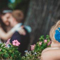 Свадьба :: Андрей Медведев