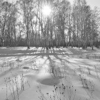 Зимний пейзаж :: Сергей Яснов