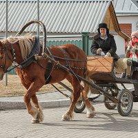 городское такси... :: Сергей Серый