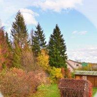 Вот и осень за окном, как всегда без приглашенья... :: Stanislav Zanegin