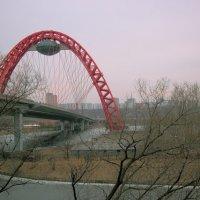 Живописный мост в Серебряном Бору :: Ирина Терентьева