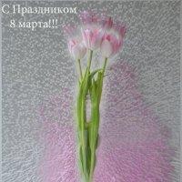 8 марта! :: Елена Шишлянникова