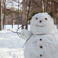 снеговичок :: Александр Строченков