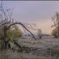 Осень ... . :: Евгений Герасименко