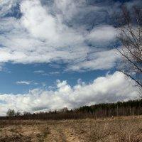 Весеннее небо :: Михаил Антонов