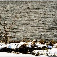 Большая вода :: Василий Хорошев